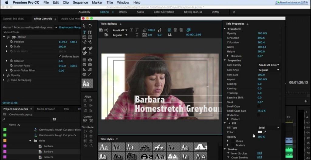 Kursus-Adobe-Premiere-Pro-CC-2015-02