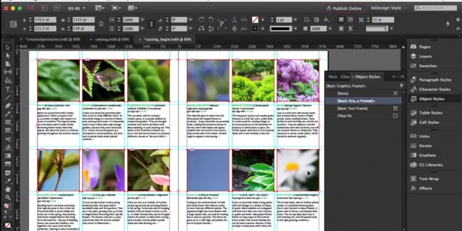 Kursus Adobe InDesign Advanced | Advanced Styles